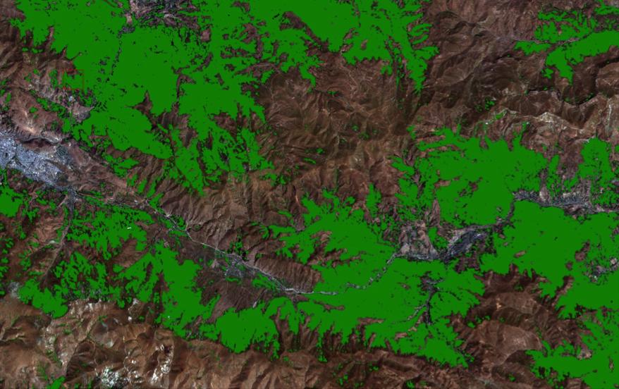Armenia Forest Inventory